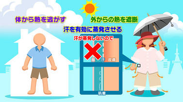 NHKより_住まいと服装の工夫で熱中症対策